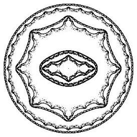(D)多項式半群のジュリア集合