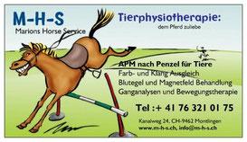 M-H-S ganzheitliche Tier-Physiotheapie