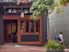 the-cat-cafe-perth