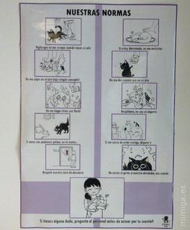la-gatoteca-normas-visitantes