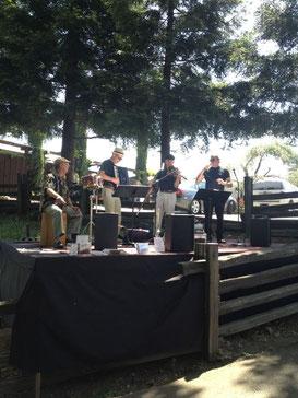イタリア音楽の生バンド有り