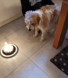 Kortez schickt Geburtstagsgrüße
