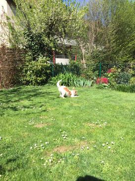 Hermes bei der Gartenarbeit
