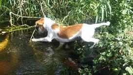 Lucia geht angeln