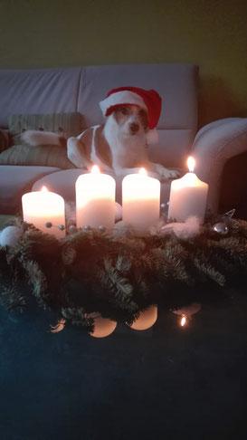 Papa Ayken wünscht frohe Weihnachten