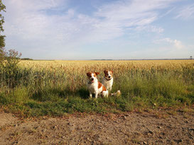Amado und Sohn Colja im Sommerfeeling
