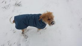 Ebony im neuen Wintermantel