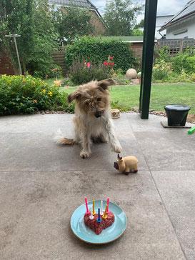 Geburtstagsgrüße von Floreana