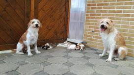 Ida, Fausto und die Kinder