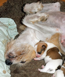 Billie ist glücklich mit ihren Kindern
