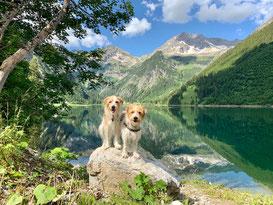 Urlaubsgrüße von Giuli und Kira