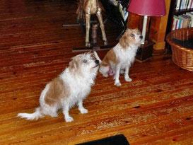 Britt van Machanned (rechts) mit Mama Crumpy