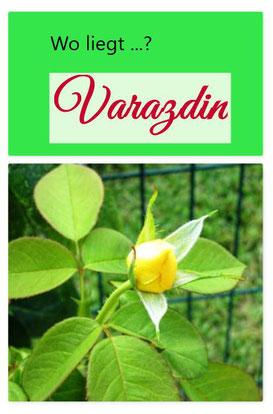 """Dises Bild zeigt eine gelbe Rosenknospe. Der Text befasst sich mit dem Lied: """"Komm mit nach Varazdin, solange noch die Rosen blühn""""."""