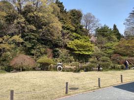 菅刈公園の日本庭園