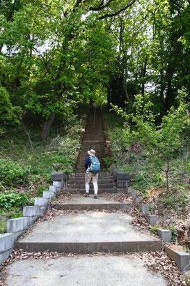 一段が高く急傾斜のきつい階段でした