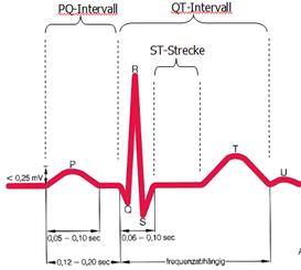 EKG-Kurve aus dem Fachbuch