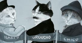 Gatos de Película