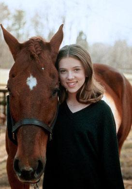 Der Pferdeflüsterer