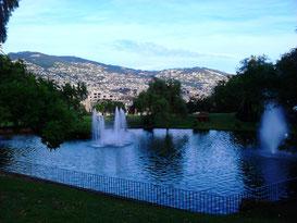 Catarina Park Funchal