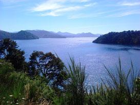 Queen Charlotte Sound, Neuseeland Südinsel