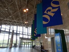 盛岡競馬場,場内散歩トップ画像
