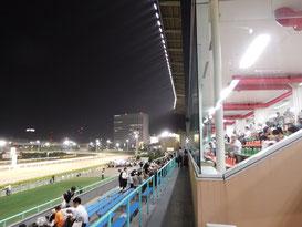 船橋競馬 ハートビートナイター 夜空 スタンド