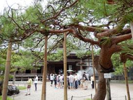 世界遺産をドライブする トップ画像 中尊寺本堂