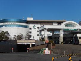 中山競馬場への道