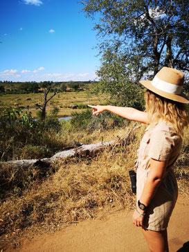 am Rande des Krugerparks