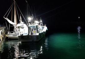 『LED水中灯搭載漁船』