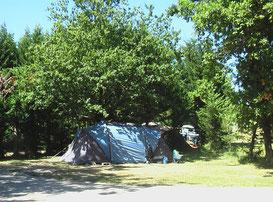 campe dans mon jardin, campe dans mon bois