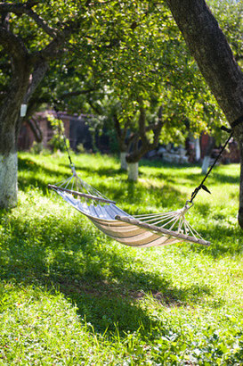Ein Ausblick auf einen schönen Garten zum Wohlfühlen