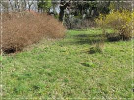 Garten-Standort-Hügelbeet