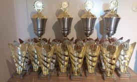 Beim 5. Altstadtlauf gibt es zum ersten Mal Pokale.