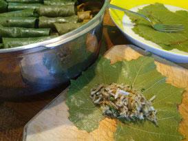 Gefüllte Weinblätter (Dolma) - gar nicht so kompliziert. Die duftigen grünen Pakete schmecken umwerfend. (Foto: Frank Butschbacher)