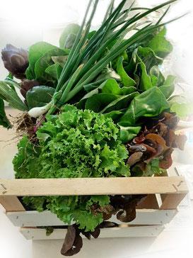 La mia prima cassetta di verdura bioologica!