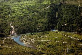 Perú es uno de los países que tiene una mayor extensión de selva amazónica. ©Leonardo F. Freitas/SINC