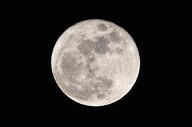 幼いころ、うさぎさんがいるって信じてたこと思いまします…。ちなみに明日の満月は19:21です