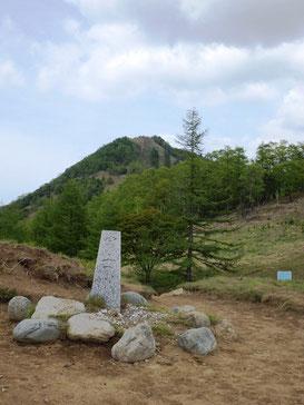 分水嶺から笠取山を望む