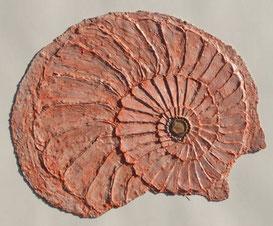 Die Druckplatte für die Ammonit-Frisur
