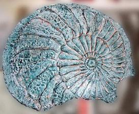 Die fertige Druckplatte mit der Ammonitfrisur