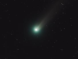 Lovejoy am 28.11.2013: 6 Zoll Refraktor mit 3 Minuten Belichtungszeit (wikipedia: NASA/MSFC/MEO/Aaron Kingery)