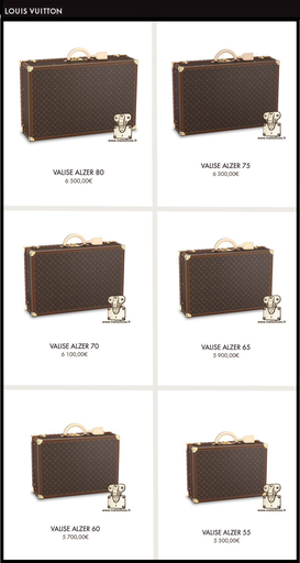 Louis Vuitton Alzer suitcase