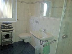 Sanitärbereich, Dusche mit Glaskabine