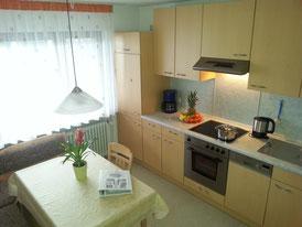 gemütliche Wohnküche mit Geschirrspüler