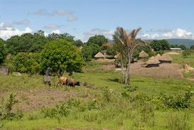 Kérouané, Haute Guinée © Michel Aymerich