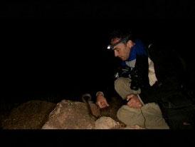 """Documentaire entier: """"Sentinelles de la nature: Le Maroc"""""""