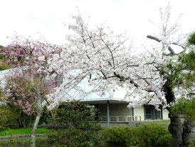旧近代美術館鎌倉館
