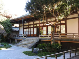 本堂裏の日本庭園