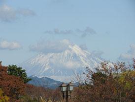 公園内から富士山